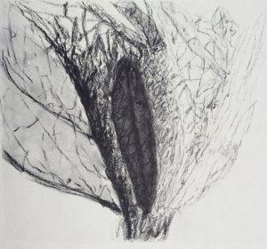 Die Krohne, Kohle auf Bütten, 1986